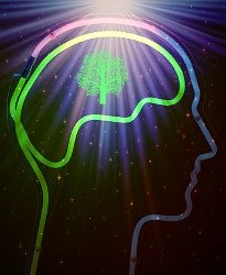 Right brain, in neon.